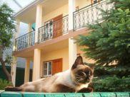 Снять комнату по адресу Краснодарский край, Анапский р-н, г. Анапа, Шевченко, дом 92